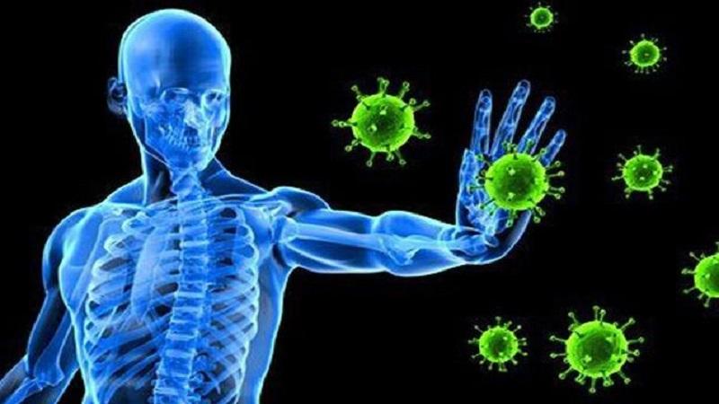 تقویت سیستم ایمنی بدن در سفر چه کنیم؟
